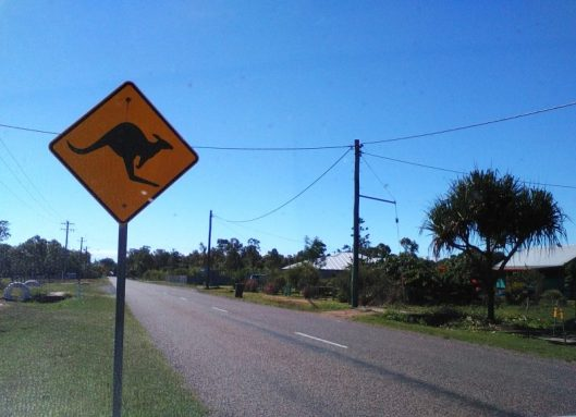 Kangaroo warning sign for motorists, Balgal Beach. This beach is another of Townsville's northern beaches.